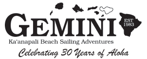 Gemini Charters