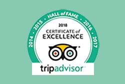 Gemini Sailing on Trip Advisor badge